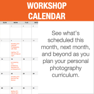 Widget_WorkshopCalendar