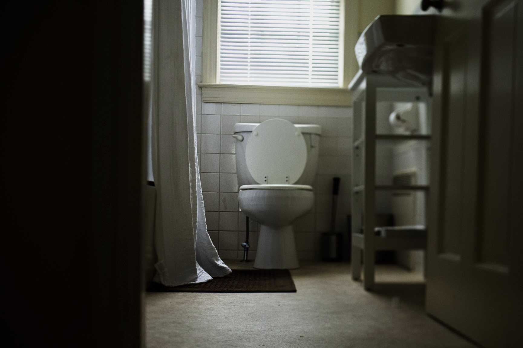 Everyday-Life-by-Sarah-Wilkerson-1730px-4105