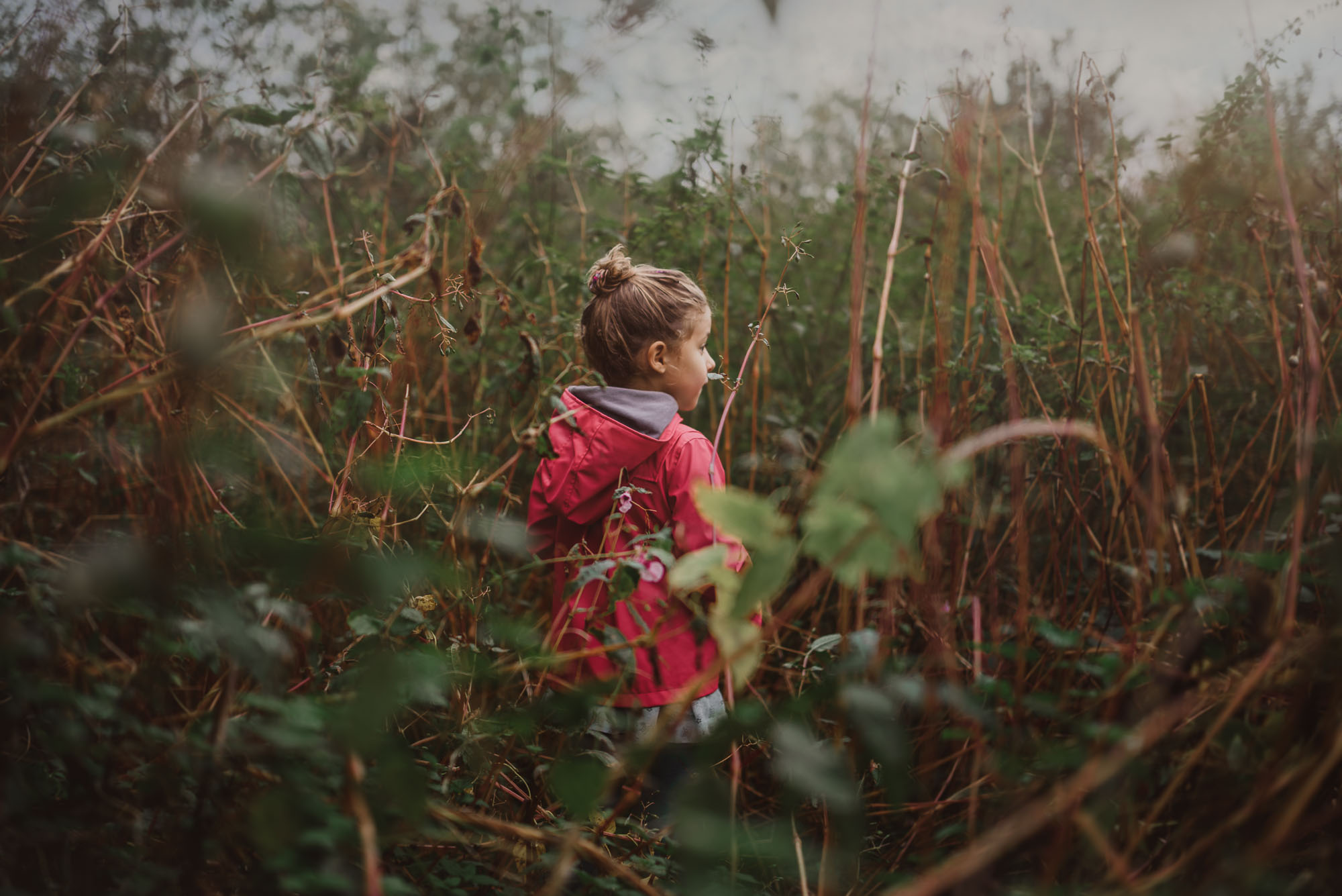 Anita Perminova Portraits And Films 2017